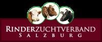rzv-logo